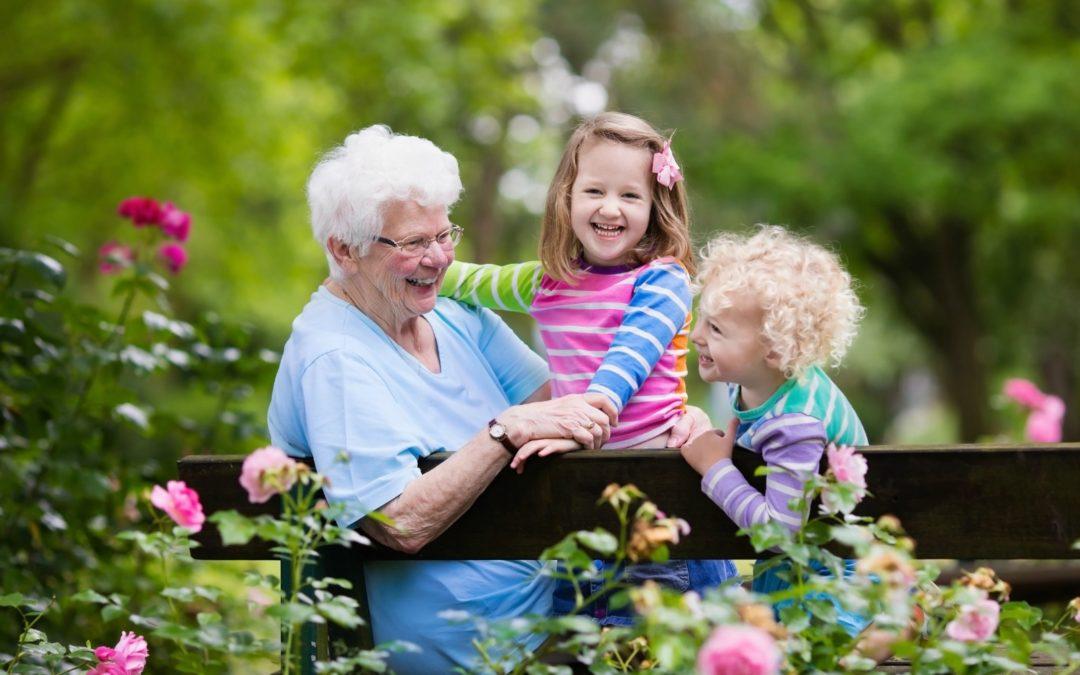Glad senior dame leger med lille dreng og pige i blomstrende rosenhave. Mormor med store børn sidder på en bænk i sommerpark med smukke blomster. Børnehavearbejde med bedsteforældre.