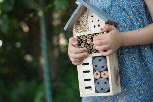 Få flere insekter i haven